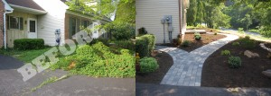 landscaping before and after